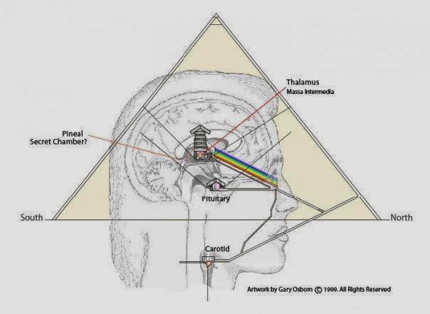 glandula pineal pirámides Egipto