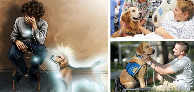 """Par leur présence les chiens absorbent l'énergie """"négative"""" autour de vous"""